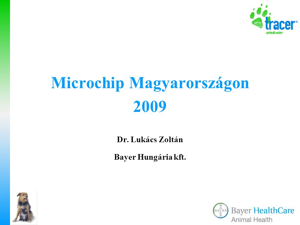 Microchip Magyarországon 2009