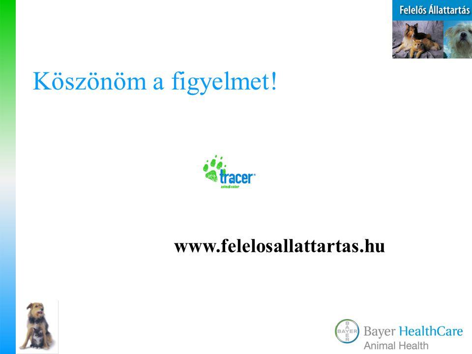 Köszönöm a figyelmet! www.felelosallattartas.hu