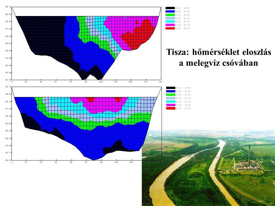 Tisza: hőmérséklet eloszlás a melegvíz csóvában