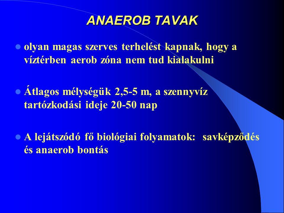 ANAEROB TAVAK olyan magas szerves terhelést kapnak, hogy a víztérben aerob zóna nem tud kialakulni.