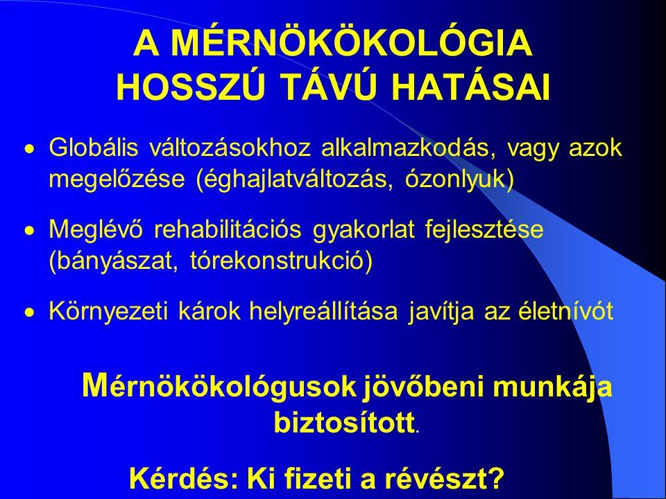 A MÉRNÖKÖKOLÓGIA HOSSZÚ TÁVÚ HATÁSAI