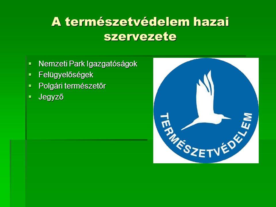 A természetvédelem hazai szervezete