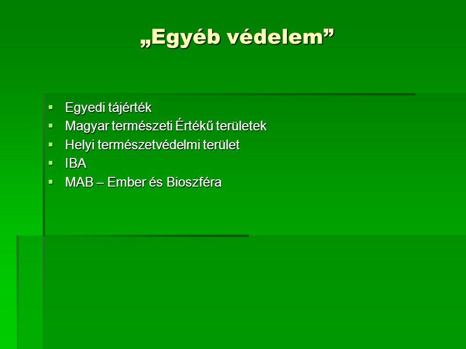 """""""Egyéb védelem Egyedi tájérték Magyar természeti Értékű területek"""