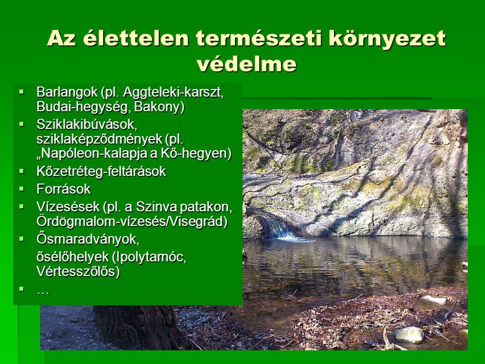 Az élettelen természeti környezet védelme