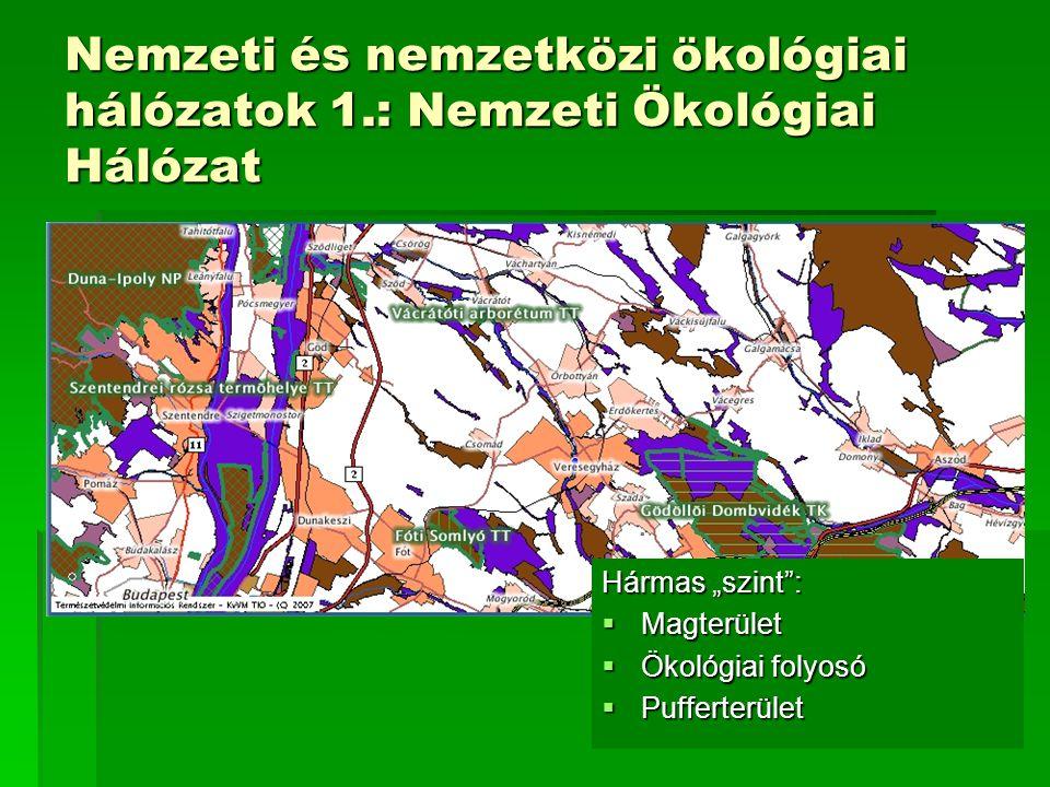 Nemzeti és nemzetközi ökológiai hálózatok 1
