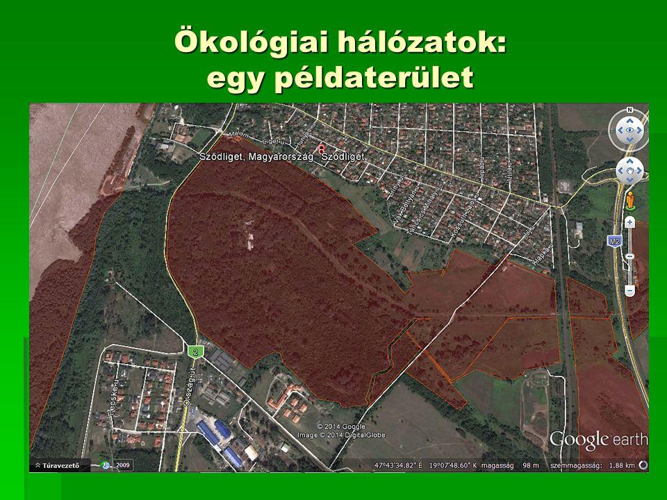 Ökológiai hálózatok: egy példaterület