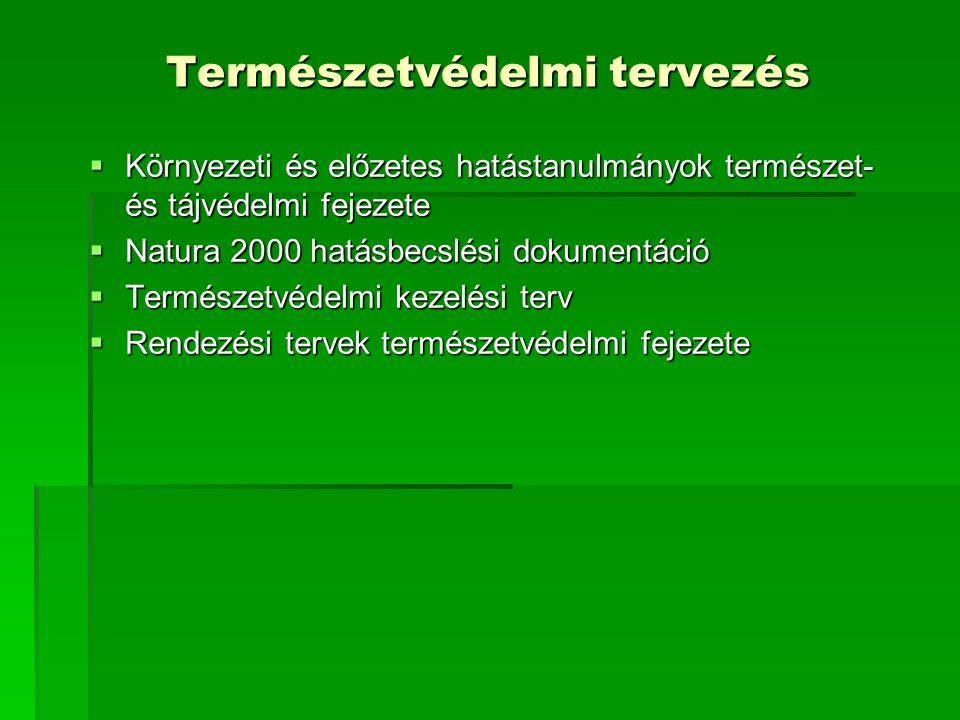 Természetvédelmi tervezés
