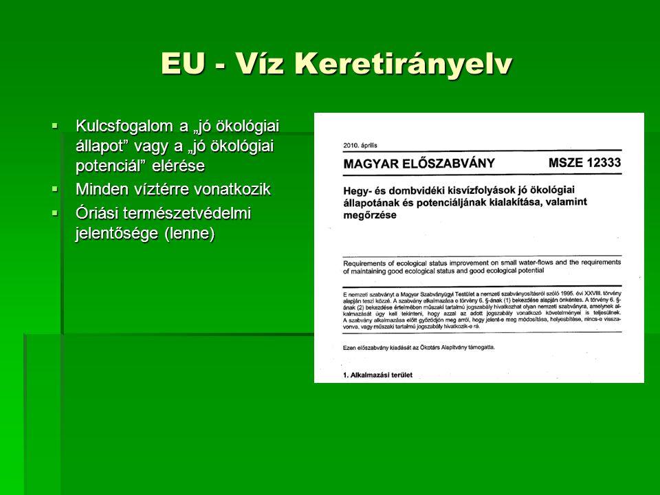 """EU - Víz Keretirányelv Kulcsfogalom a """"jó ökológiai állapot vagy a """"jó ökológiai potenciál elérése."""