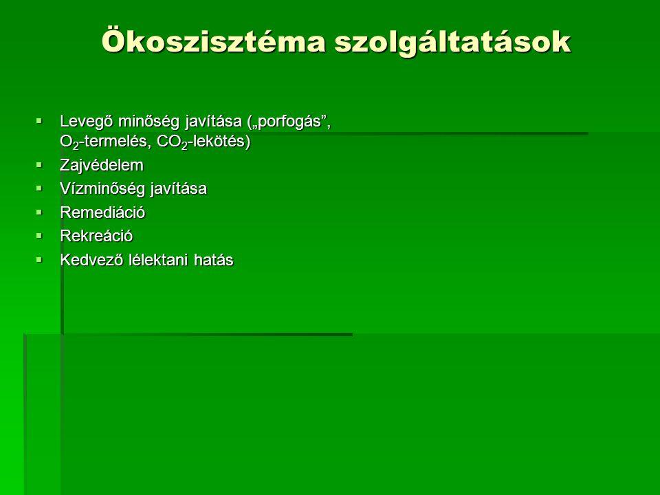 Ökoszisztéma szolgáltatások