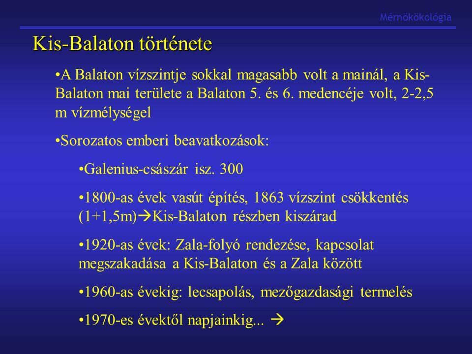 Kis-Balaton története