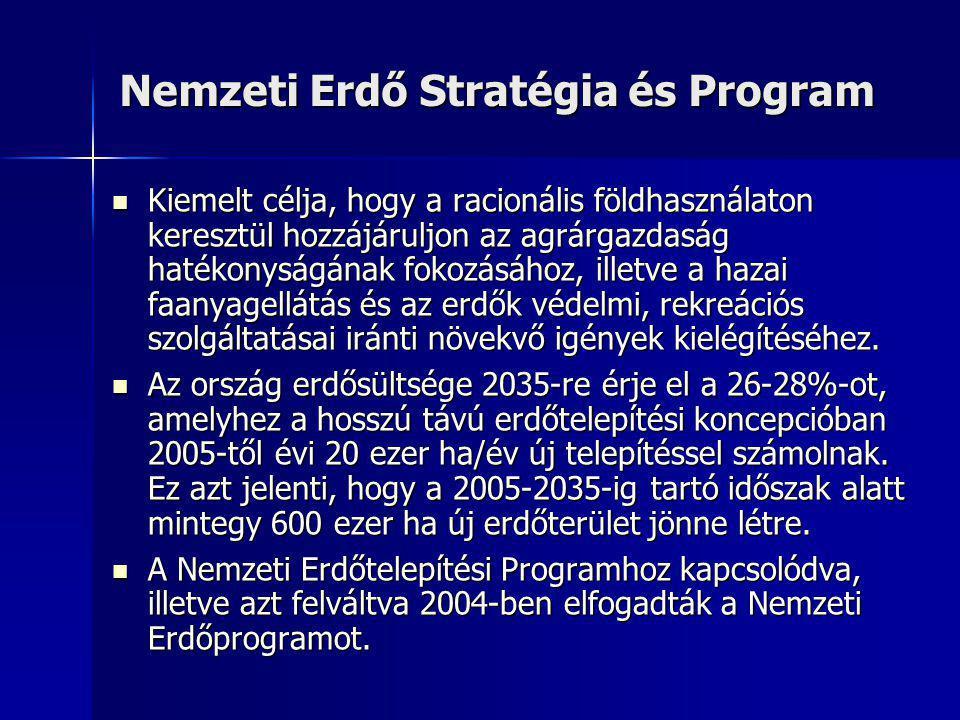 Nemzeti Erdő Stratégia és Program