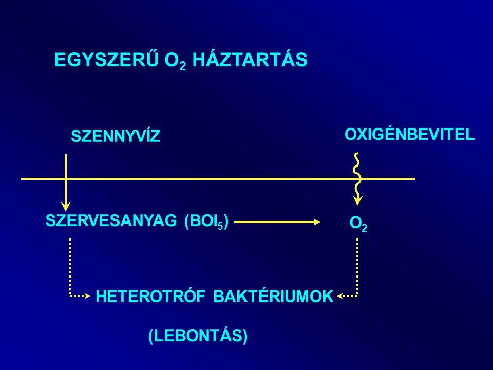 EGYSZERŰ O2 HÁZTARTÁS OXIGÉNBEVITEL SZENNYVÍZ SZERVESANYAG (BOI5) O2