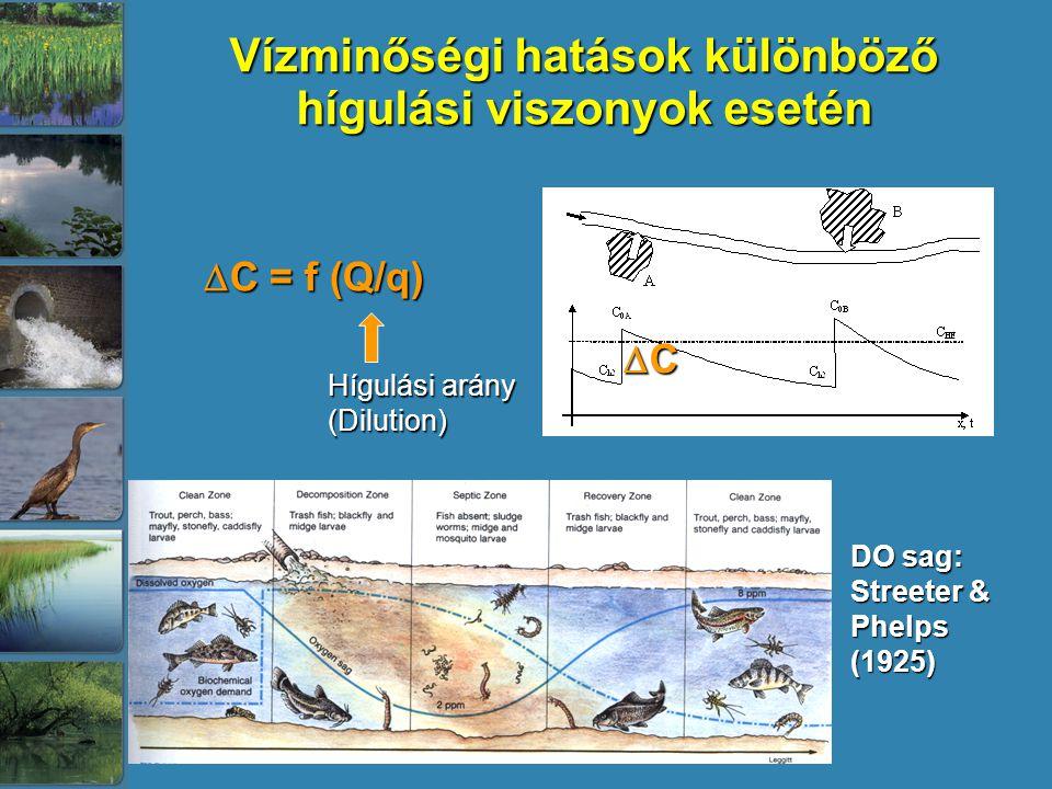 Vízminőségi hatások különböző hígulási viszonyok esetén