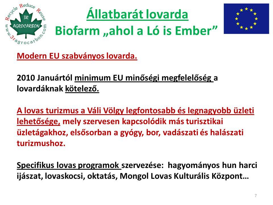 "Állatbarát lovarda Biofarm ""ahol a Ló is Ember"