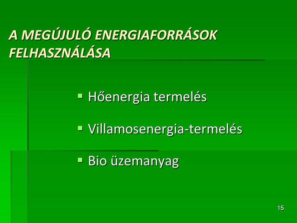 A MEGÚJULÓ ENERGIAFORRÁSOK FELHASZNÁLÁSA