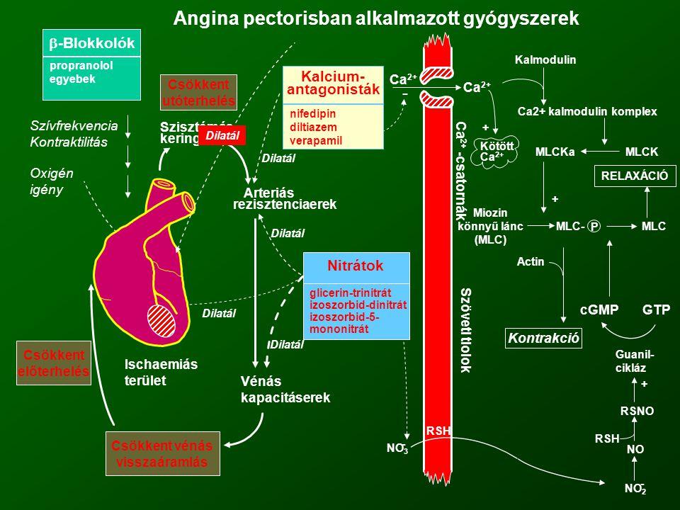 Angina pectorisban alkalmazott gyógyszerek