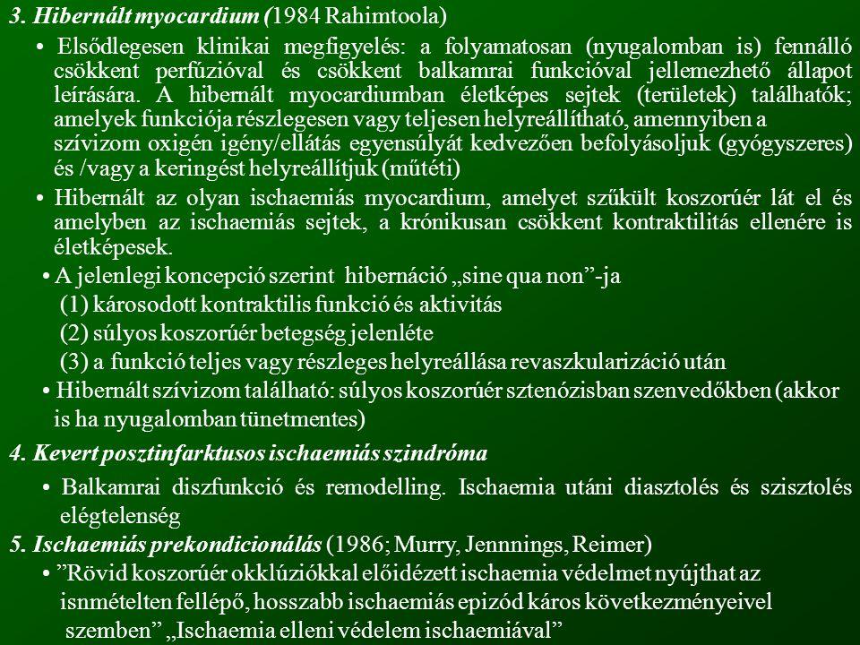 3. Hibernált myocardium (1984 Rahimtoola)