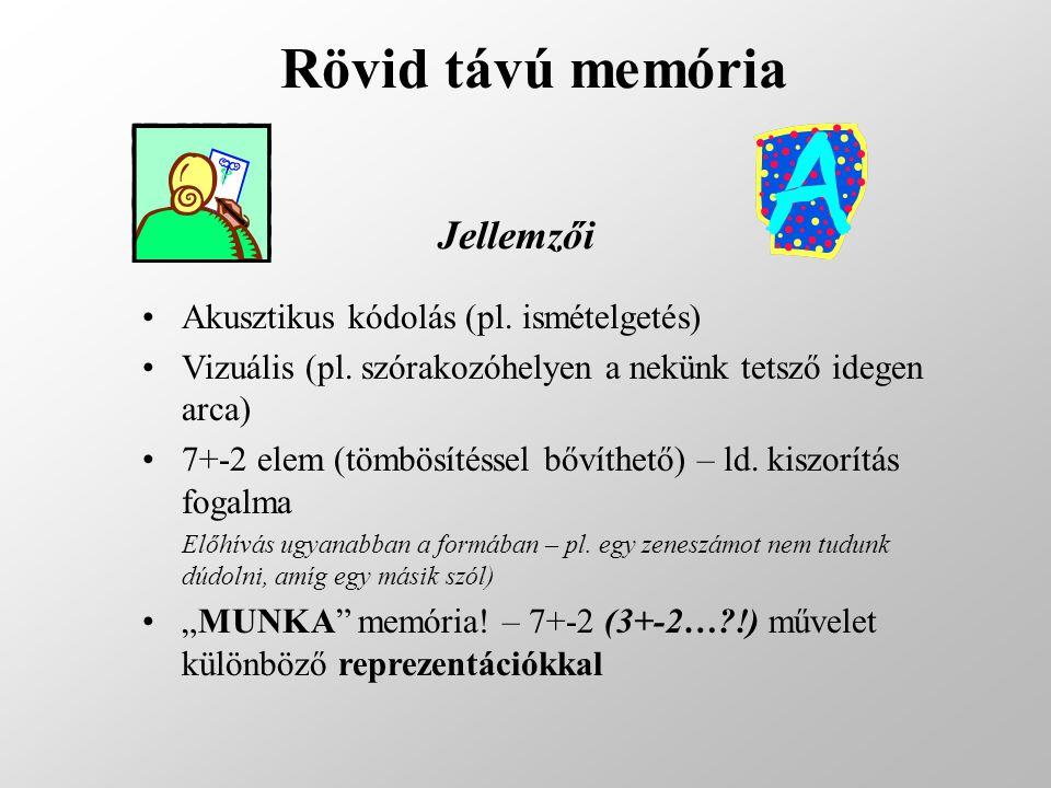 Rövid távú memória Jellemzői Akusztikus kódolás (pl. ismételgetés)