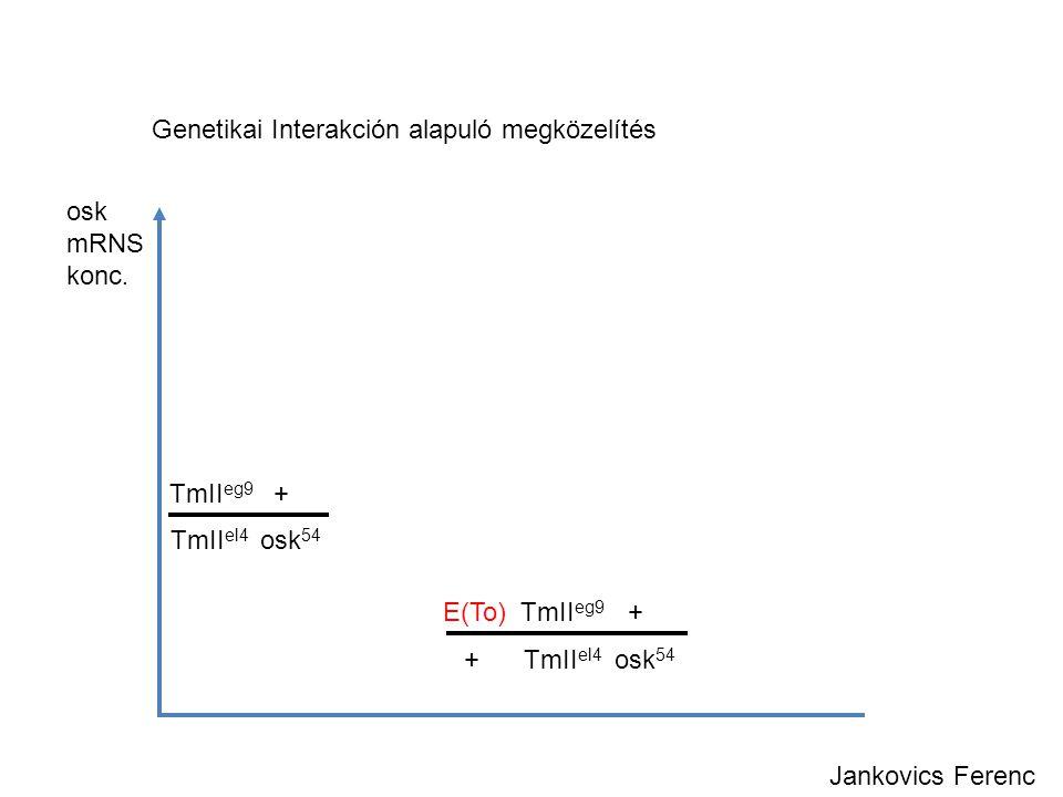 Genetikai Interakción alapuló megközelítés