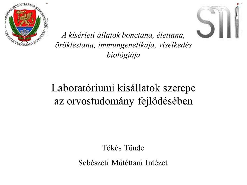 Laboratóriumi kisállatok szerepe az orvostudomány fejlődésében