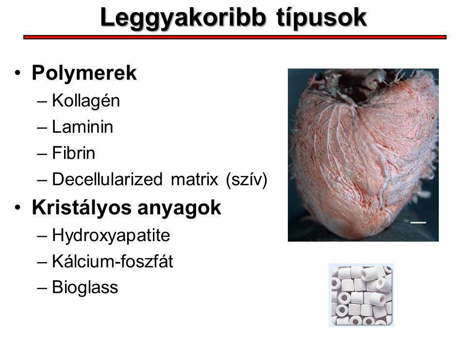 Leggyakoribb típusok Polymerek Kristályos anyagok Kollagén Laminin