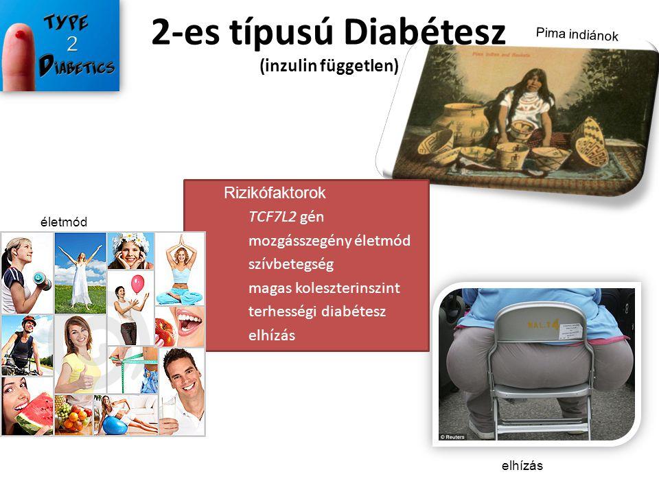 2-es típusú Diabétesz (inzulin független)