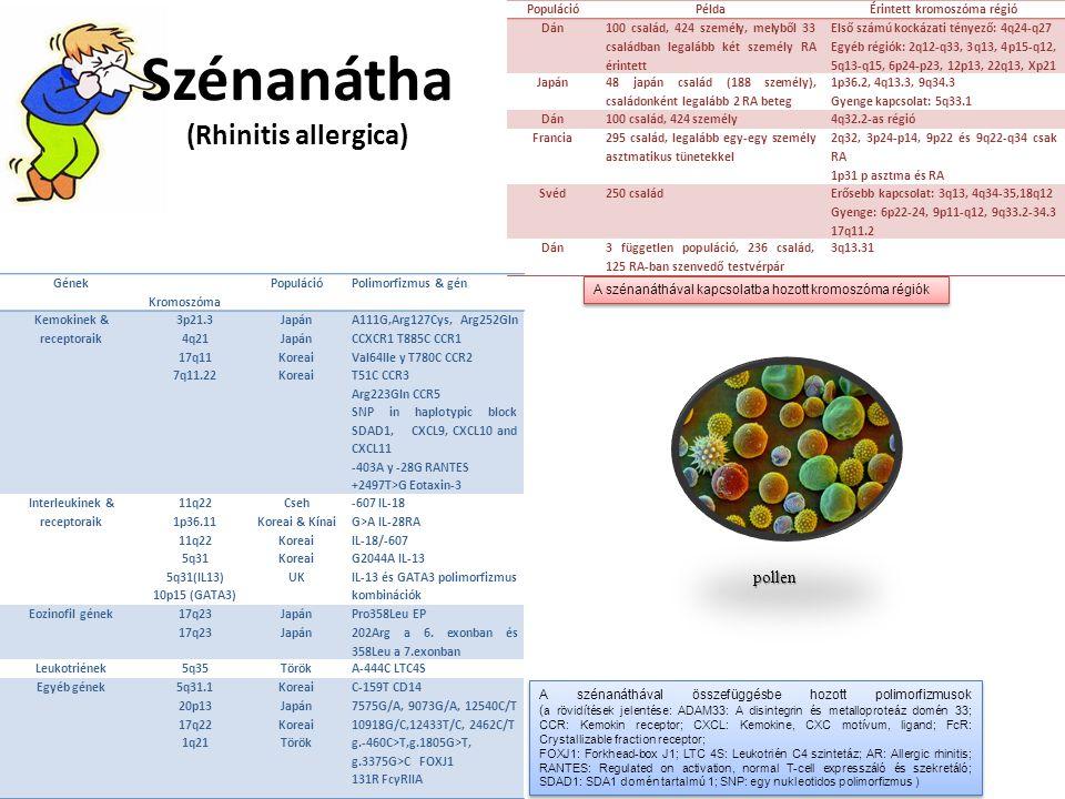 Szénanátha (Rhinitis allergica)