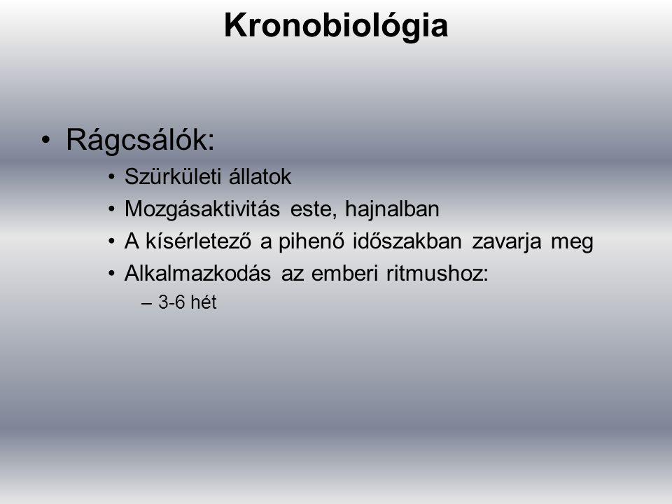 Kronobiológia Rágcsálók: Szürkületi állatok