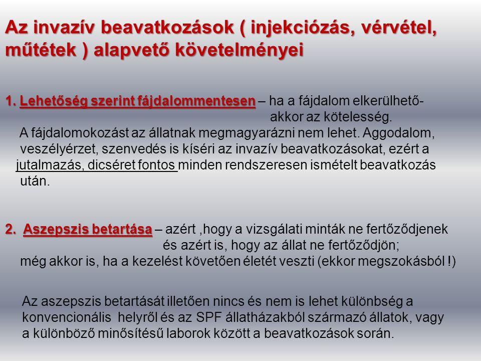 Az invazív beavatkozások ( injekciózás, vérvétel, műtétek ) alapvető követelményei