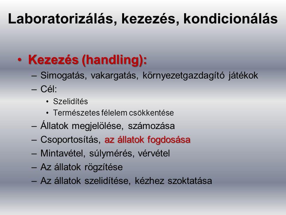 Laboratorizálás, kezezés, kondicionálás