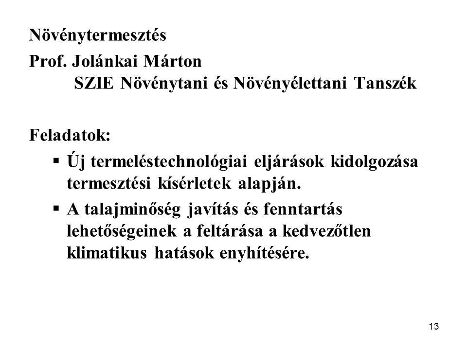Növénytermesztés Prof. Jolánkai Márton. SZIE Növénytani és Növényélettani Tanszék. Feladatok: