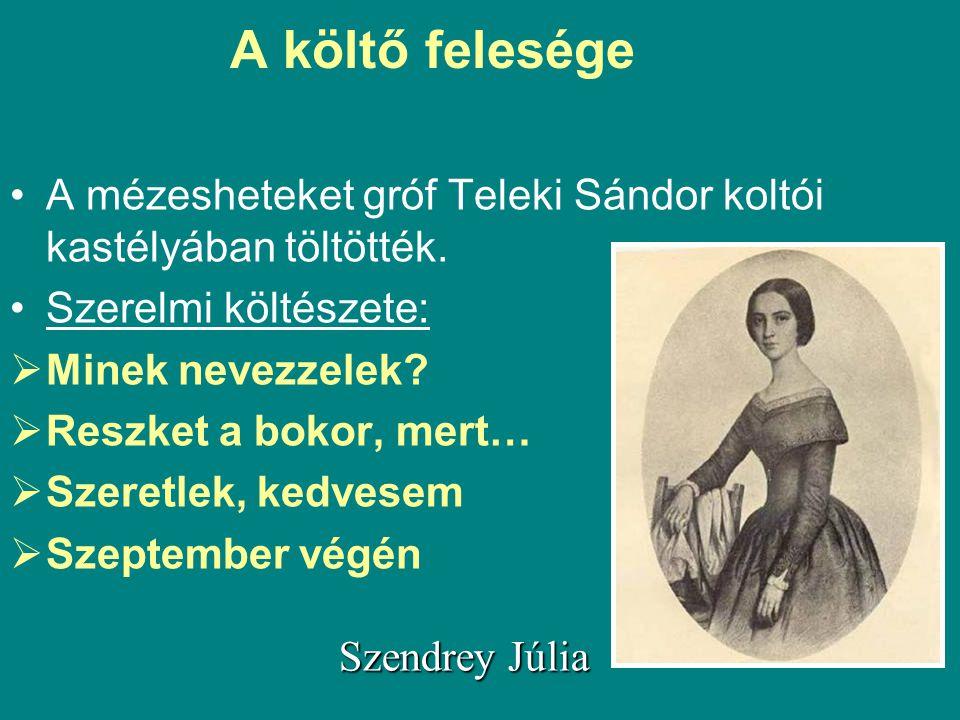 A költő felesége A mézesheteket gróf Teleki Sándor koltói kastélyában töltötték. Szerelmi költészete:
