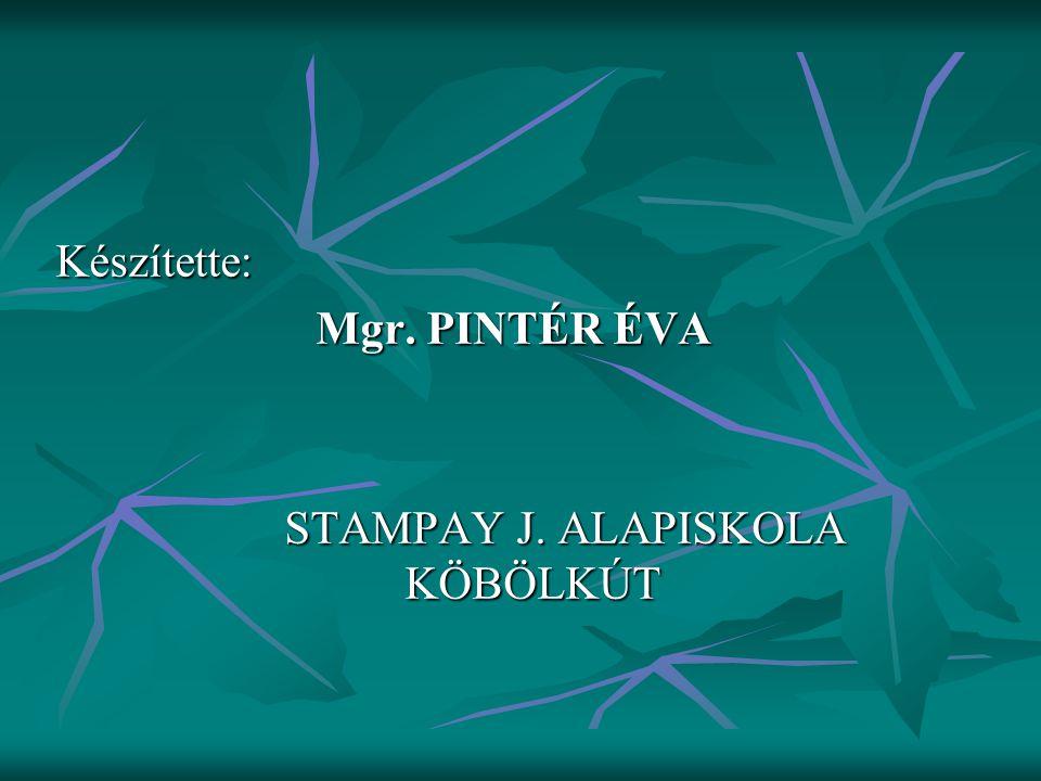 STAMPAY J. ALAPISKOLA KÖBÖLKÚT
