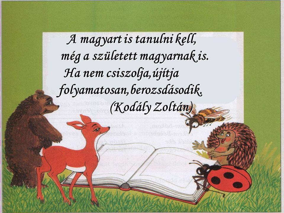 A magyart is tanulni kell, még a született magyarnak is