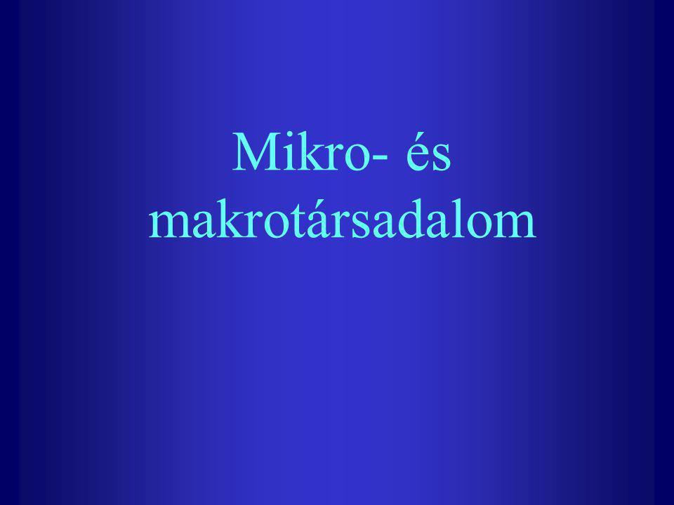 Mikro- és makrotársadalom