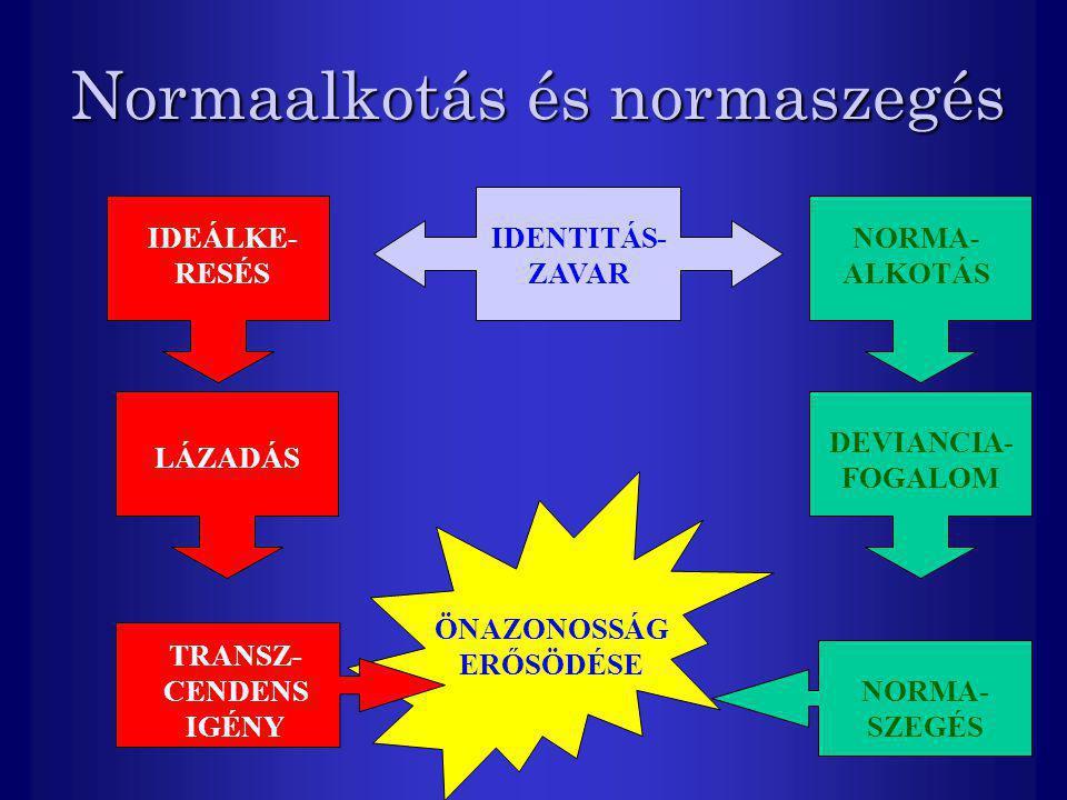Normaalkotás és normaszegés