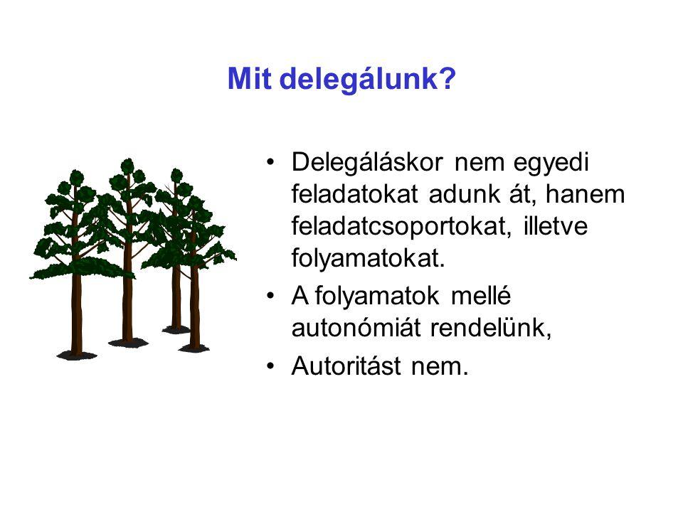 Mit delegálunk Delegáláskor nem egyedi feladatokat adunk át, hanem feladatcsoportokat, illetve folyamatokat.
