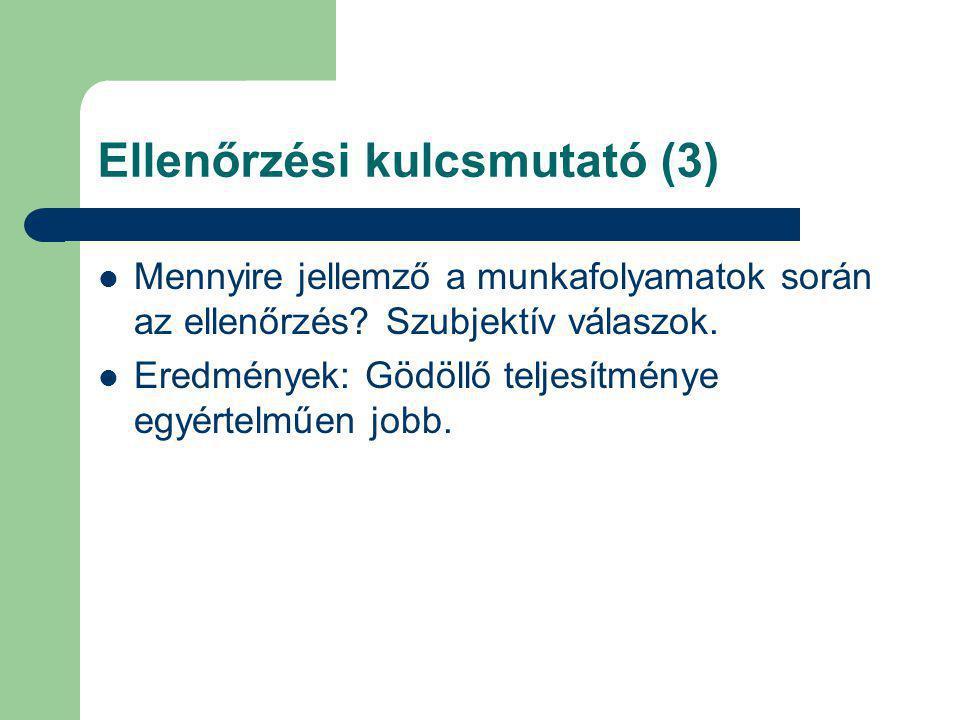 Ellenőrzési kulcsmutató (3)
