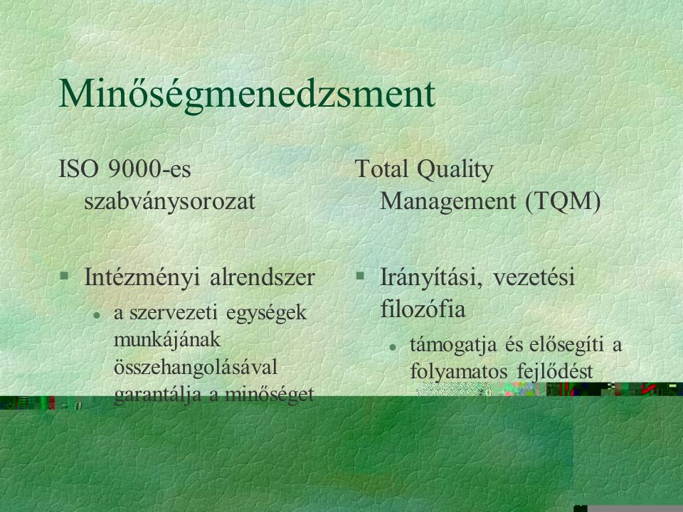 Minőségmenedzsment ISO 9000-es szabványsorozat Intézményi alrendszer