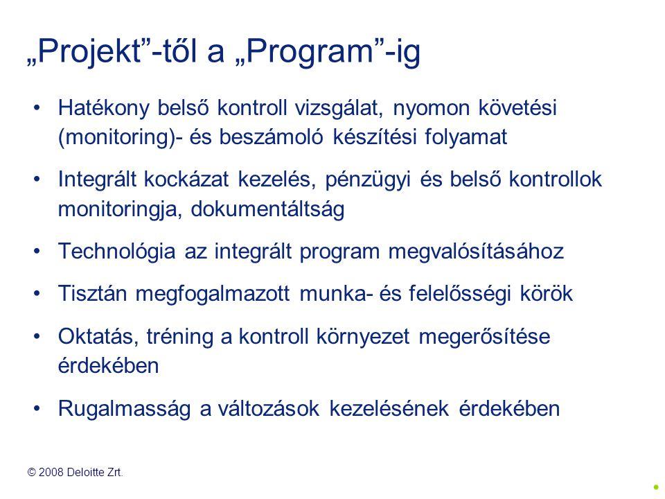 """""""Projekt -től a """"Program -ig"""