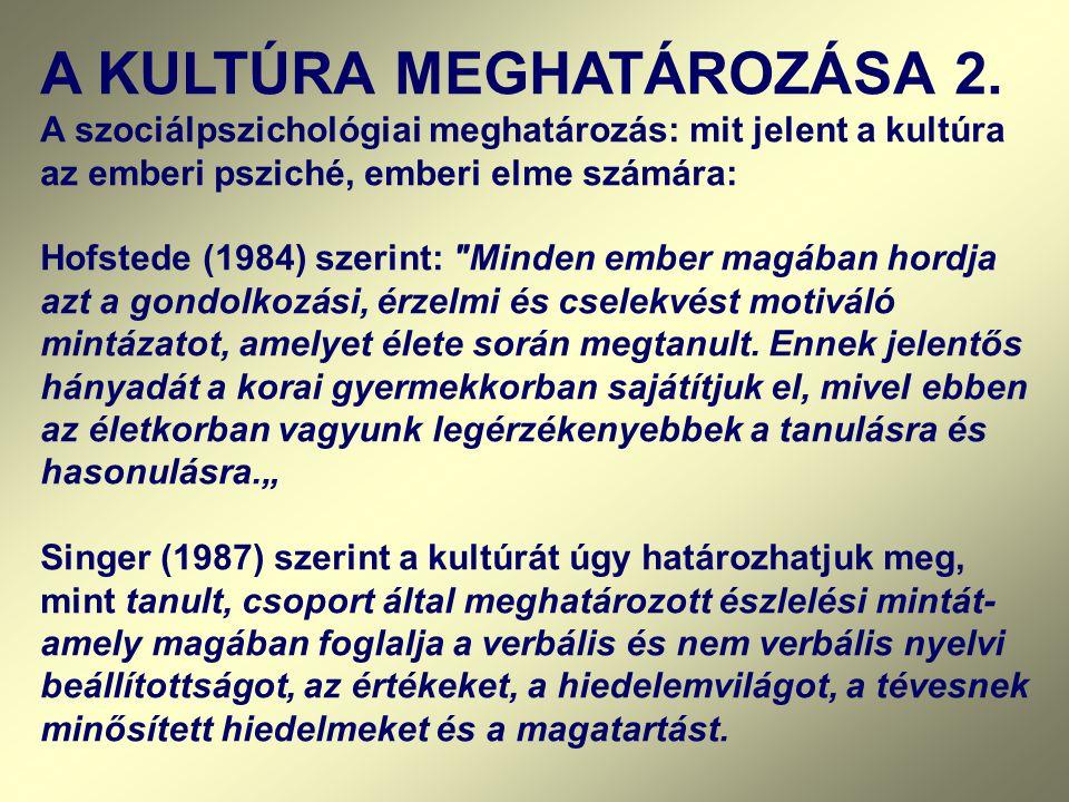 A KULTÚRA MEGHATÁROZÁSA 2.