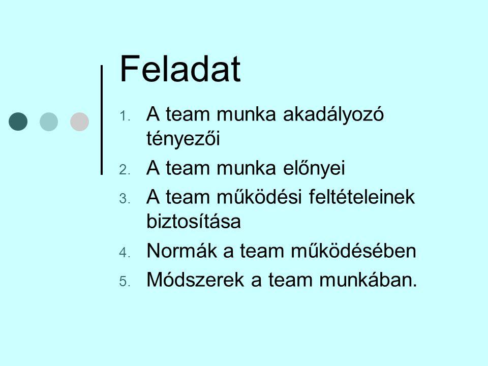 Feladat A team munka akadályozó tényezői A team munka előnyei