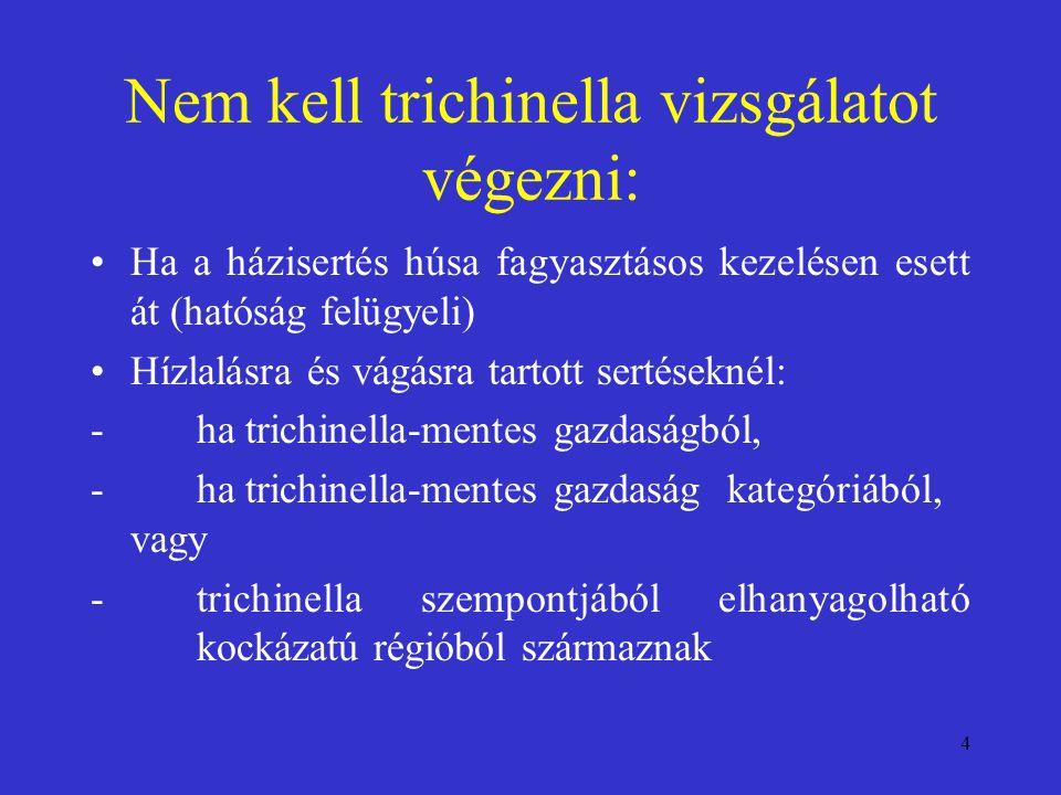 Nem kell trichinella vizsgálatot végezni: