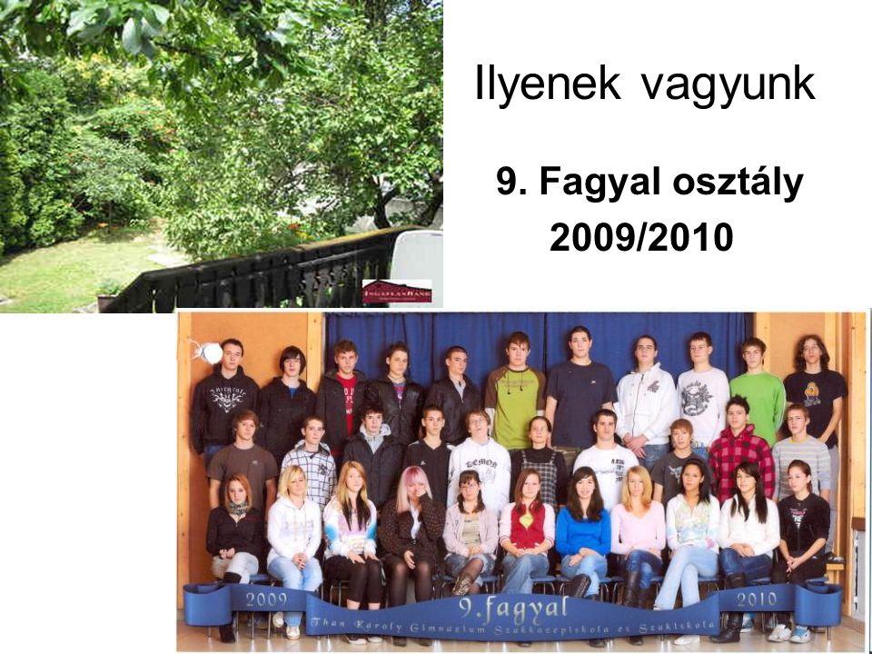 Ilyenek vagyunk 9. Fagyal osztály 2009/2010