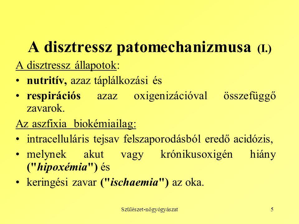 A disztressz patomechanizmusa (I.)