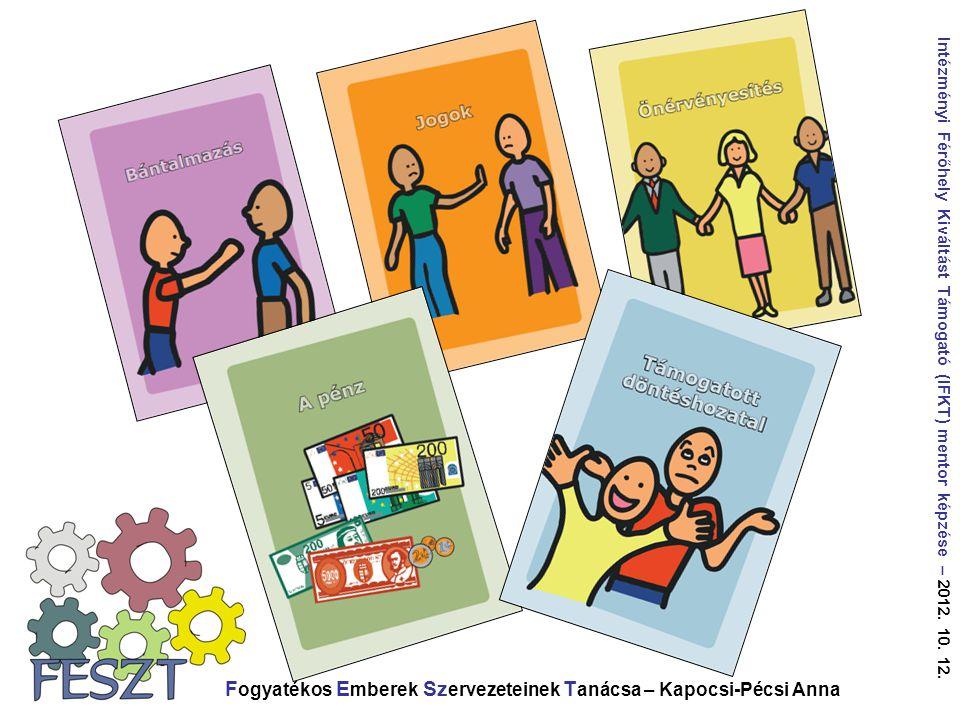Fogyatékos Emberek Szervezeteinek Tanácsa – Kapocsi-Pécsi Anna