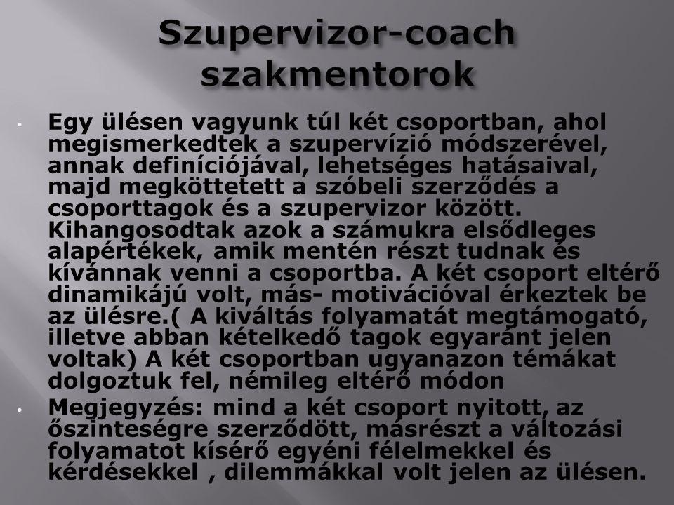Szupervizor-coach szakmentorok