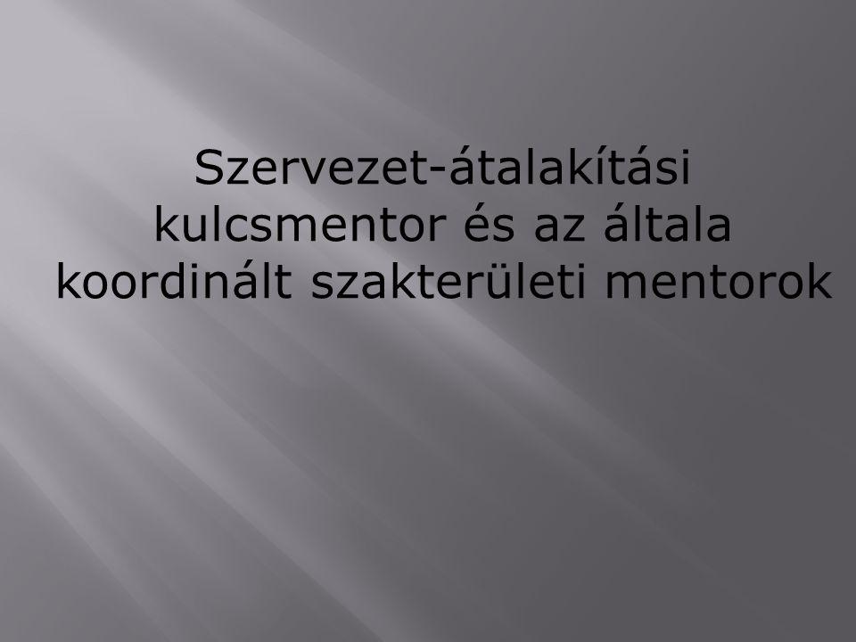 Szervezet-átalakítási kulcsmentor és az általa koordinált szakterületi mentorok