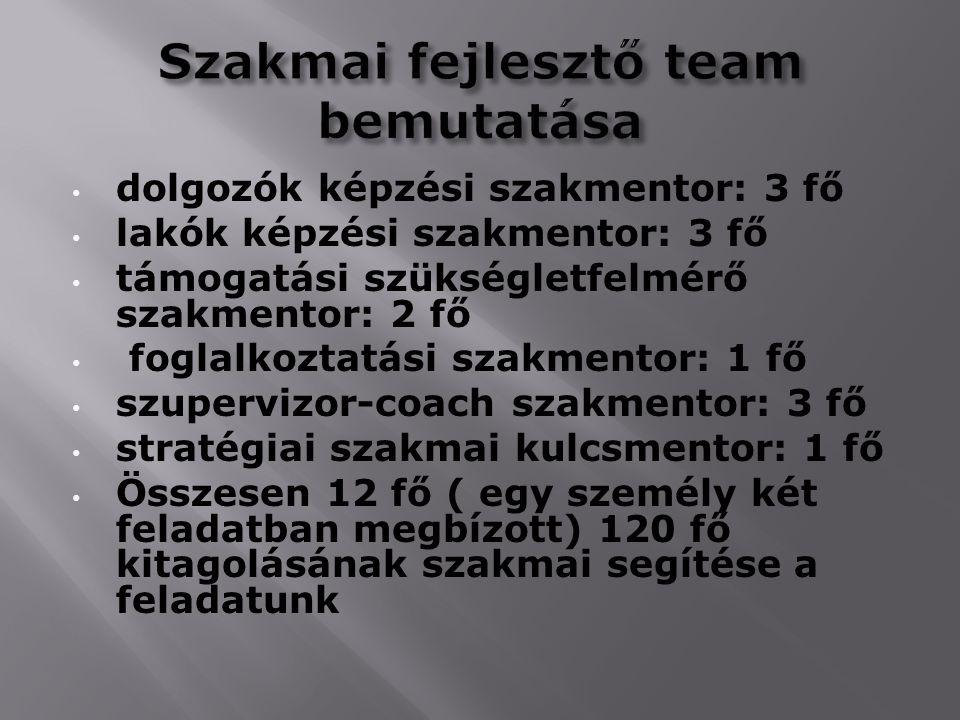Szakmai fejlesztő team bemutatása