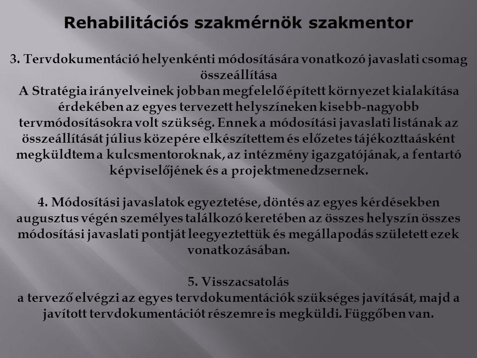 Rehabilitációs szakmérnök szakmentor